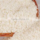 round grain white rice 5 broken / indian rice bulks