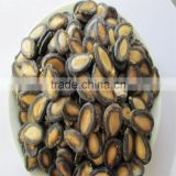 2016 Chinese black hybrid melon seeds