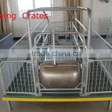 Farrowing Crates New Develeped Composite Slatted Flooring                                                                         Quality Choice