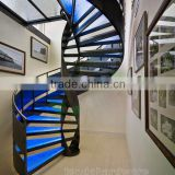DNA Helical glass spiral Staircase with glass railng                                                                         Quality Choice