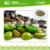 Natural Green Coffee Bean Extract for weight loss herb products