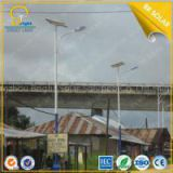 China 60W solar light with 8M height steel pole from BR Sola