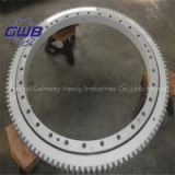 slewing bearing in China