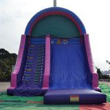 Inflatable Slide Big Slide With Ladder