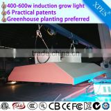 High Efficiency Lumen bi-spectrum induction grow light magnetic 400/500/600watt for medicinal plants
