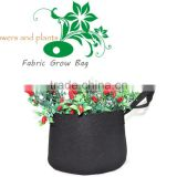 Breathable Non-woven Fabrics Pot, Root Control Bag
