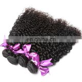 New arrival top quality virgin hair bundles,malaysian curly hair with closure