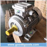 Gphq Ms 0.37kw 3 Phase AC Electrical Motor
