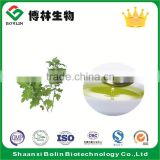 Shaanxi Bolin Factory Supply Artemisia Oil Lubricant Oil
