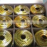 (factory) New product galvanized roofing coil nails galvanized roofing coil nail big head