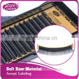 0.07/0.10/0.15thickness New arrival premium premade Individual Black mink lash eyelash extensions