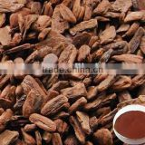 100% Pure Natural Hot Selling High Quality Plant Extract,Pine bark extract Mulch