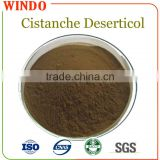Pharmaceutical Raw Material Herbal Cistanche Deserticol Root Extract/Cistanche Deserticol PE Powder