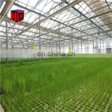 Inquiry about Commercial Hydroponic Growing System, Hydroponic Greenhouse
