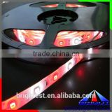 Light Pink And Purple Beads 2835 Led Strip, High Brightness SMD 2835 No Voltage Drop LED Strip