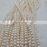 7-8mm AA+ girls love beautiful color nice freshwater pearl strand necklace