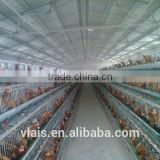 wholesale small animal cages for automatic chicken cage