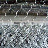 Hexagonal Wire Mesh for Hot Sale