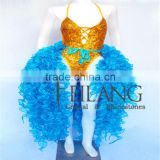 Salsa Latin Drag Dance Ostrich Feather Dress