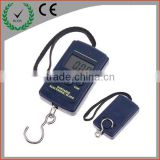 Cheapest and Good quality 40kg 10g portable electronic scale digital luggage scale