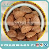 the lowest price of wholesale sweet apricot seeds, kernels, raw apricot seeds made in Zhangjiakou factory