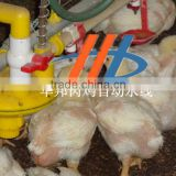 cconvenient cleaning chicken feeding line for poultry farm poultry feed manufacturing equipment
