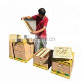 Hot sale Food Grade langstroth beehive bee hive box bee beekeeping supplies for sale