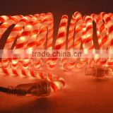 2015 New product christmas decoration rice rope light