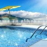 Industry grade swimming pool water diatomite filter aid                                                                         Quality Choice
