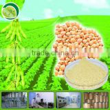 100% Natural and soy lecithin powder