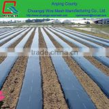 150 mircons greenhouse uv plastic cover,agricultural poly film for produce vegetable and fruit