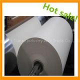 Grade A Pe Coated Paper Cup Paper With Printing In Roll