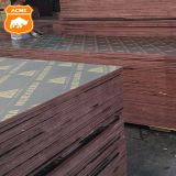 18mm Water-proof Concrete Plywood Construction Plywood Sheet