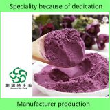 Free Sample High Quality Pure Natural Purple Potato Powder