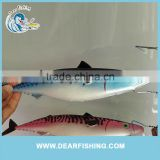 Fishing Lure New Design Metal Board Free Fishing Tackle Samples