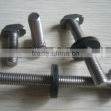 stainless steel bolt with EDPM washer