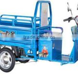electric three wheel truck