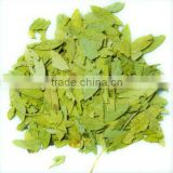 Senna Leaf extract powder,Senna Leaf powder,Senna Leaf extract manufacturer