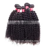 Natural Black Color Virgin Malaysian Afro Kinky Curly Hair Natural Human Hair Extensions