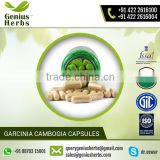 Factory Supply Best Quality Garcinia Cambogia Extract Capsules