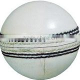 Cricket Ball - White