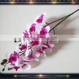 latex real touch flower orchid