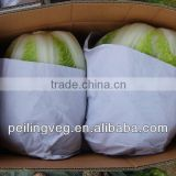 fresh round & long cabbage from China
