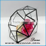 Alloy frame hanging terrarium glass home decoration