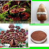 Organic 100% Natural Factory direct supply with competitive price 5% Polysaccharides Organic Reishi Mushroom Extract