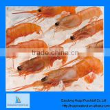 high quality frozen shrimp vannmei shrimp