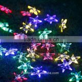 2016 new popular Solar Powered Star Globe String Lights Sunniemart 20 LED White String Lights for Garden Chrismas