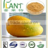 100% natural African wild mango seed extract powder