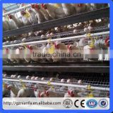 Suriname layer egg chicken cage/poultry farm house design Poultry cages for layers and broilers (Guangzhou Factory)