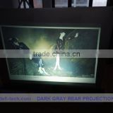 DEFI best price back projection screen translucent vinyl